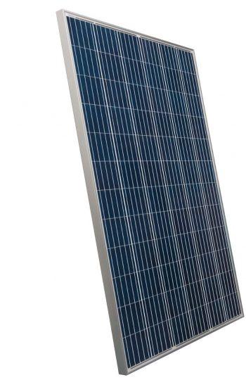 Suntech-325-Poly